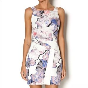 Finders keepers floral fitted dress young spirit
